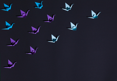 Origami birds in composition Stock Photo