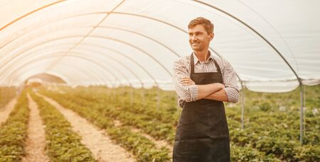 Confident farmer in large greenhouse Imagens