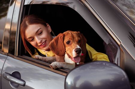 Cheerful woman and dog in modern car