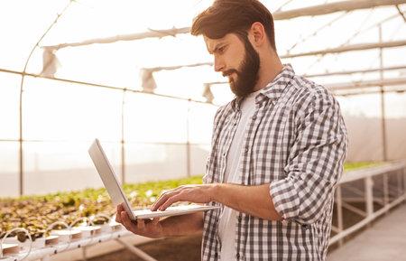 Bearded farmer using laptop in greenhouse