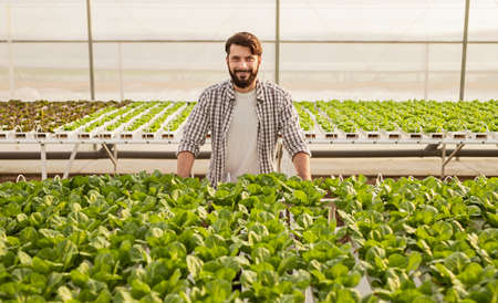 Hothouse owner standing near plants
