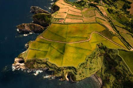 Green island with rocky coast