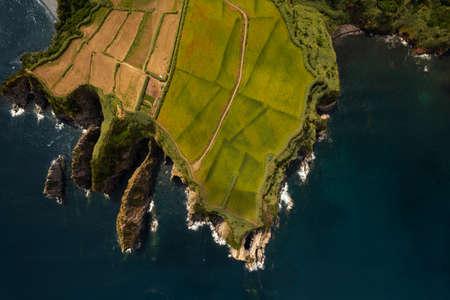 Agricultural plantations on coastline of island