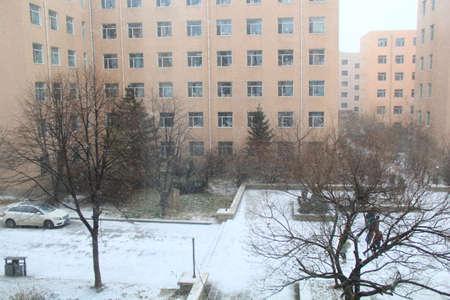 akademik: Akademik zima Zdjęcie Seryjne