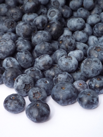 wildberry: Blueberries