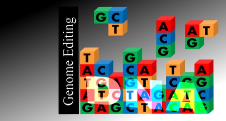 hybridization: Genome editing - DNA genome as comuper game-wall, All which is supplemented by falling blocks. Links erect the title: Genomic Editing. Background: black and gray gradient.
