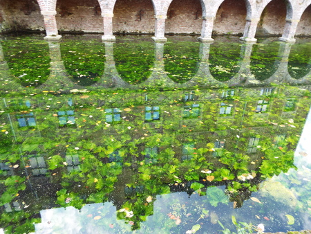 Mirroring - Silhouette of a castle façade mirrored in a moat, covered with aquatic plants. Germany 10.30.2016 Editorial