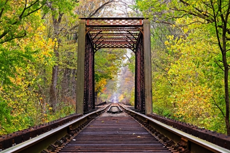 forest railroad: Railroad Trestle in Early Fall
