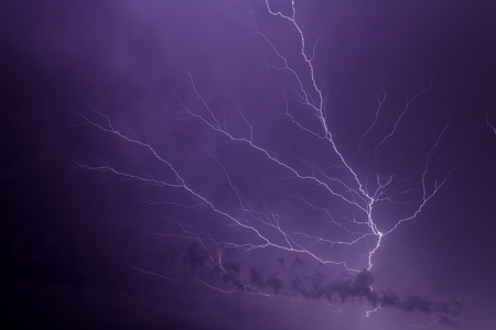 Branching Lightning at Night photo