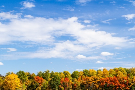 Colorful autumn tree line topped by a blue, cloud-draped sky  Great text space