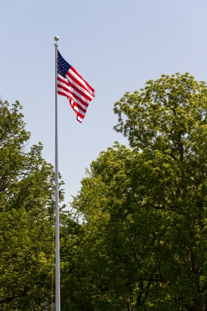 US Flag Flying High with Trees Stock Photo