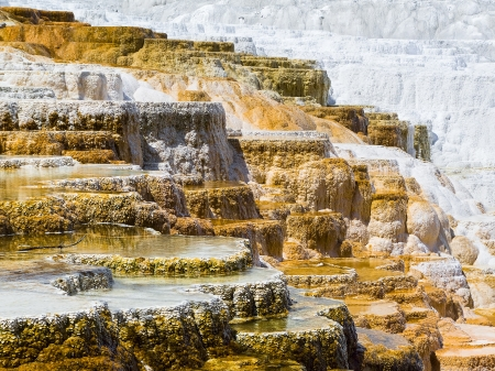 Travertine Terraces at Mammoth Hot Springs, Yellowstone National Park, Wyoming, USA  photo