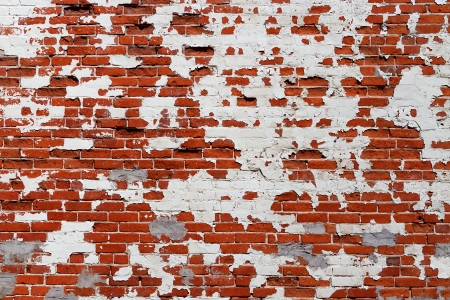 Grungy Brick Wall photo