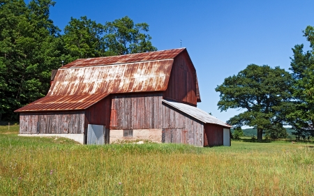 tin: Large cattle barn on the Charles Olsen Historic Preserve, a part of the Sleeping Bear Dunes National Lakeshore in Oneida, Michigan