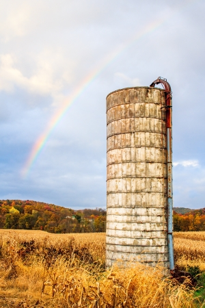 An old white silo stands in an autumn cornnfield with a rainbow above. 版權商用圖片