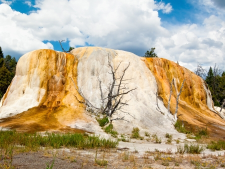 seeping: Orange Spring Mound is a beautiful thermal feature at Mammoth Hot Springs in Yellowstone National Park, Wyoming  Stock Photo