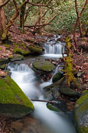 A stream cascades over rocks in the Smoky Mountains of Tennessee  photo