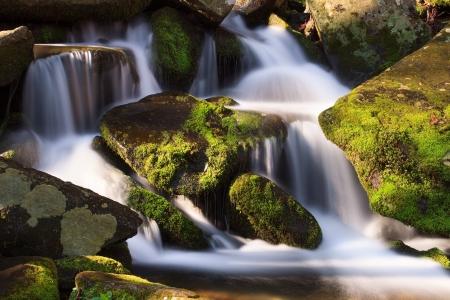 그레이트 안개 자욱한 산 국립 공원, 테네시, 미국에서 이끼 덮인 바위의 뒤죽박죽이 물 떨어지는