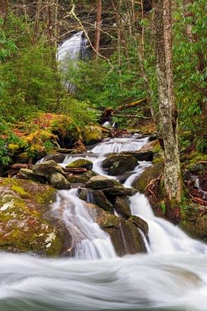 One cascading mountain stream flows into another in Great Smoky Mountains National Park, Tennessee, USA  photo