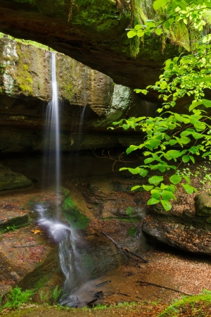 The Rockbridge is a geological formation in Hocking County, Ohio. A small waterfall plunges between the hillside and the natural bridge, spanning nearly 100 feet across a ravine. photo