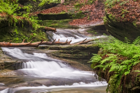 Cascading waterfalls flow down the gorge at Old Mans Cave in Ohios Hocking Hills State Park. photo