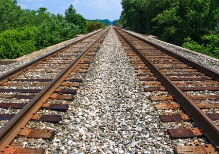 wood railroad: Two sets of railroad tracks run straight and parallel to a vanishing point on the horizon with green trees along side  Stock Photo