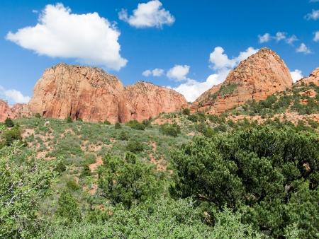 towering: El paisaje de la Kolob Canyons Distrito de Parque Nacional Zion tiene muchos picos de arenisca
