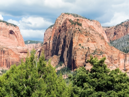 rocky mountain juniper: Timber Top Mountain is one of several impressive sandstone peaks in the Kolob Canyons District of Utah