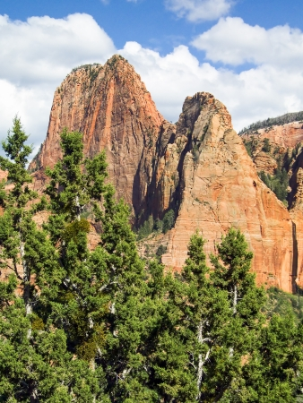 rise above: Sandstone towers rise above evergreen trees under a dramatic blue cloudy sky in the Kolob Canyons District of Utah