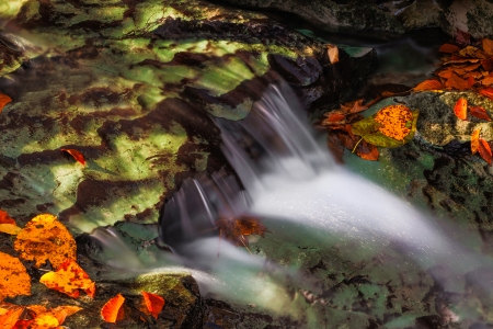 Water flows over a limestone ledges in a creek surrounded by colorful fall leaves and lit with dappled early morning sunlight