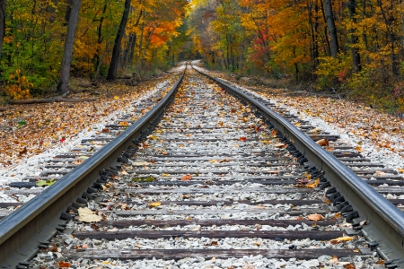 Shiny steel railroad tracks lead the eye trough trees with vivid fall colors  Stock Photo