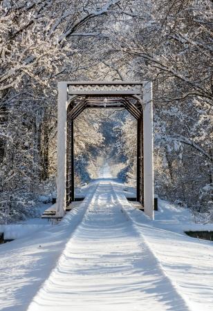 철 기차 가축과 철도 트랙은 숲이 우거진 겨울의 눈으로 덮여 있습니다. 스톡 콘텐츠