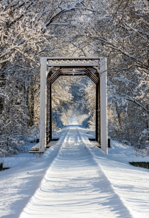 trestle: An iron train trestle and railroad tracks are covered with snow in wooded, wintry scene