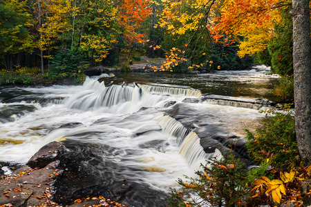 Whitewater cascades over rock ledges with intensely colorful fall foliage all around at Bond Falls in Michigan Фото со стока
