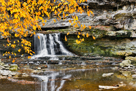 Golden autumn leaves hang down above a flowing waterfall  Photographed at McCormick