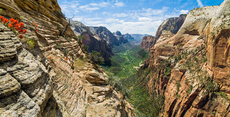 mountaintops: Refrigerator Canyon leads into the main canyon of Utah s Zion National Park  Stock Photo
