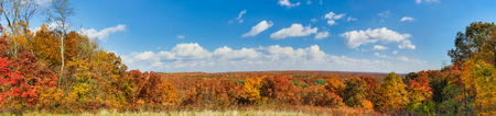 The autumn landscape of Indiana s Brown County State Park is displayed in panorama fashion  photo