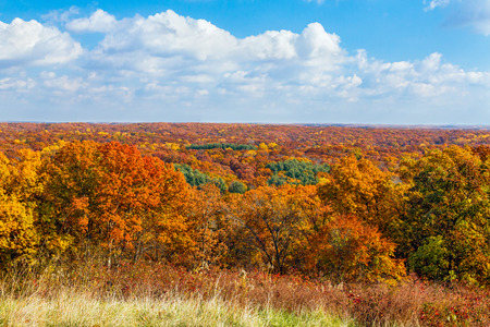 as far as the eye can see: Fall foliage as far as the eye can see is viewed from a ridge top in Indiana Stock Photo