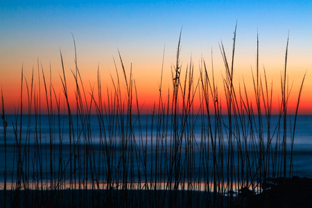 Dune grass is silhouetted by a colorful predawn sky over the Atlantic Ocean at Washington Oaks State Park, Florida