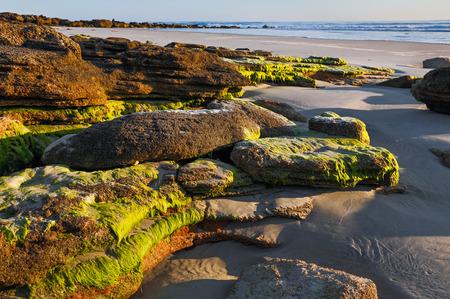 coquina: Fotografiado en luz de la ma�ana, una playa de arena del oc�ano Atl�ntico al sur de San Agust�n, Florida cuenta con una coquina afloramiento de piedra natural