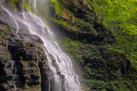 Cathedral Falls, a waterfall in West Virginia