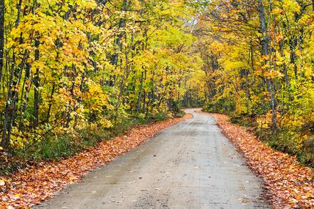 alger: Una strada si snoda sterrata attraverso un paesaggio autunnale in una giornata nuvolosa di ottobre.