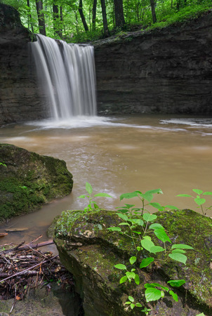 plunges: Water plunges over Rock Rest Falls, a waterfall in Jennings County, Indiana. Stock Photo