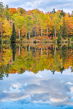 north woods: Beautiful trees with colorful fall leaves are reflected on a pond at Alberta  in Michigans Upper Peninsula.