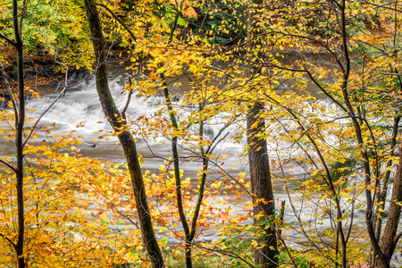northeast ohio: Squaw Rock Falls is viewed through autumn foliage at South Chagrin Reservation Park near Cleveland, Ohio.