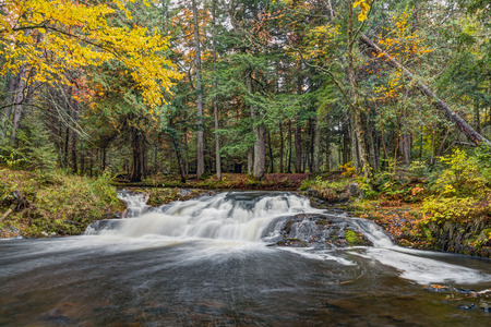 cedars: Surrounded by huge cedars and autumn foliage, Jumbo Falls is a short but scenic waterfall in Michigans western Upper Peninsula.