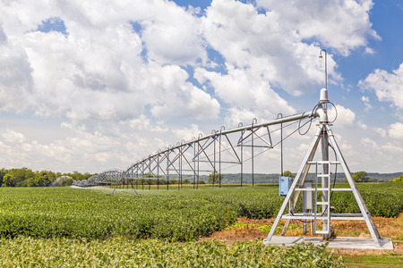 green fields: A soybean field in the American Midwest is watered by a center pivot irrigation system under a cloudy blue sky. Stock Photo