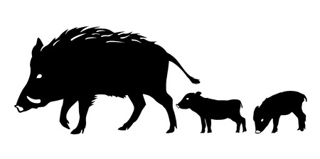 New Year's card material: boar, Silhouette Иллюстрация