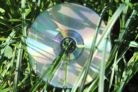 compact disk: Compact disk with grass growing throw hole