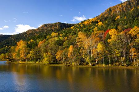 exhilaration: Autumn